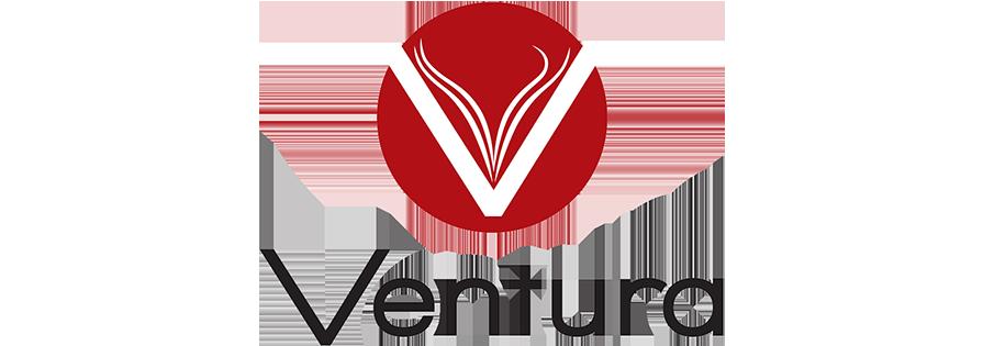 Ventura forlag AS